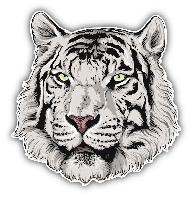 Watercolor Lion Head Car Bumper Sticker Decal 5/'/' x 5/'/'