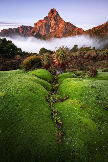 Mt. Anne illuminated by the sun's morning warmth in South-West National Park, Tasmania, Australia.