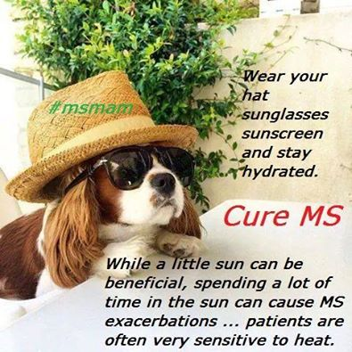 a65d546608acc100c1843861faf58831 1505 best ms memes and more multiple sclerosis images on pinterest,Multiple Sclerosis Memes