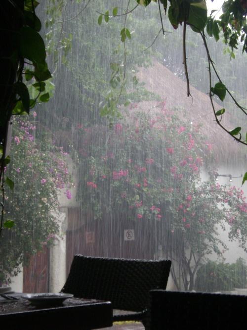 Por aquellas cosas vistas detrás de la lluvia