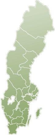 """Om hemlösa får bostad, utan krav på nykterhet eller behandling, klarar nästan alla att behålla lägenheten. Det visar en utvärdering av """"Housing first"""" i Europa. I Sverige finns försök i bland annat Göteborg, Helsingborg och Stockholm. Även Malmö, Karlstad, Örebro, Sollentuna och Uppsala har mindre projekt."""