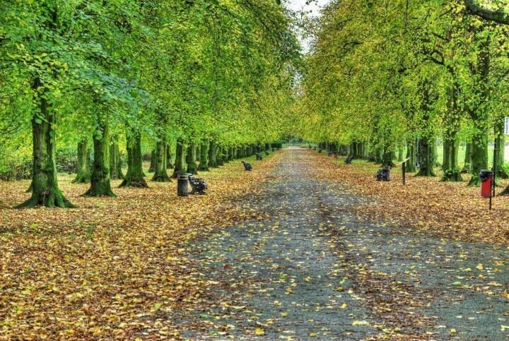 Haslam Park Preston Lancashire