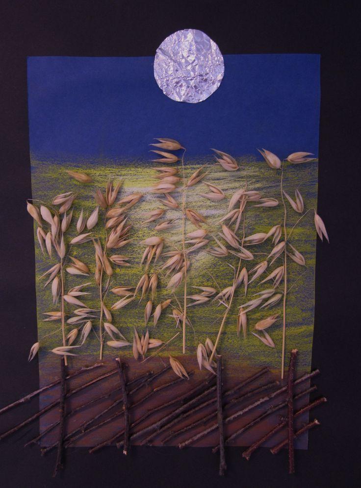 Kaurapelto kuun loisteessa