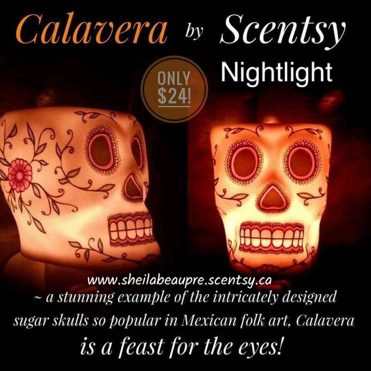$24 Lifetime Warranty  Our popular Calavera Warmer in Nightlight form! A stunning example of the enigmatic and intricately designed sugar skulls so prevalent in Mexican folk art, Calavera is a remarkable feast for the eyes.