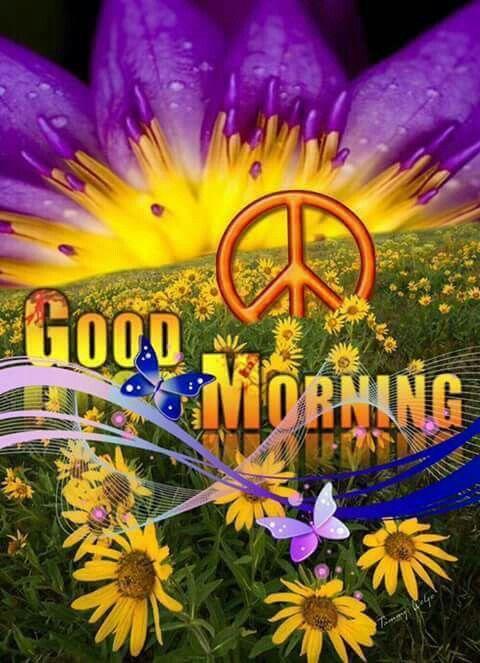 Good Mornin' Hippie Family ✌❤