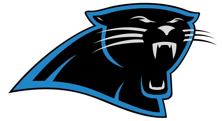 Carolina Panthers NFC Champions Coins & More Made in America Made in USA
