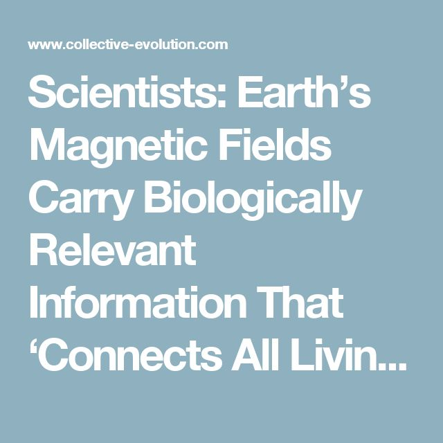 Scientists: Earth's Magnetic Fields Carry Biologically Relevant Information That 'Connects All Living Systems' – Collective Evolution