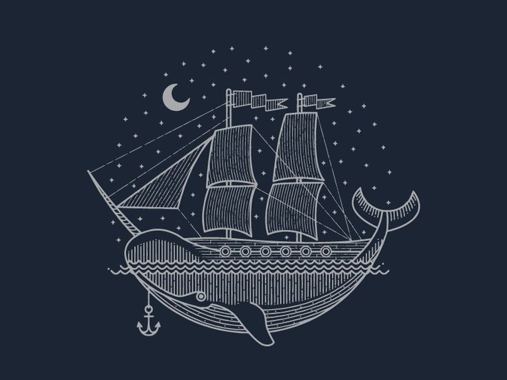 Narwhal, narwhal https://dribbble.com/shots/2016205-Narwhal-narwhal
