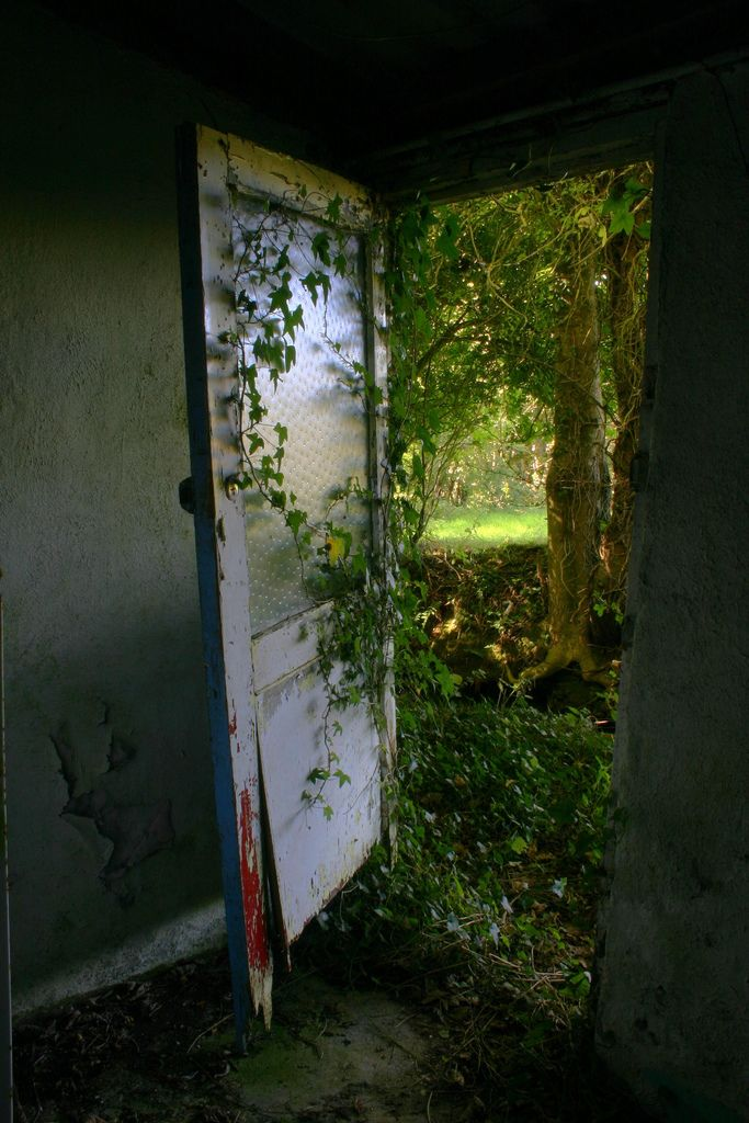 ivy and door - abandoned house in fahan, ireland