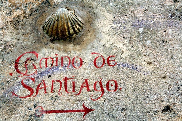 https://flic.kr/p/cXi4fW | Indicador del Camino de Santiago en Laredo | con una concha un camino lechoso el justiprecio