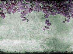 Wallpaper with floral pattern EDEN - Wall&decò