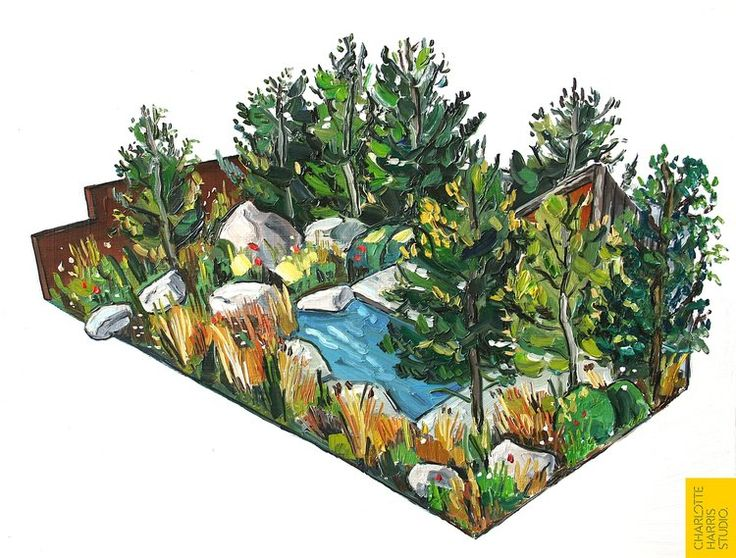First Image of RHS Chelsea Royal Bank of Canada Garden