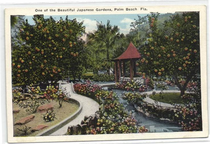 1000 Images About Vintage Postcards Florida On Pinterest Miami Bar B Q And Key West