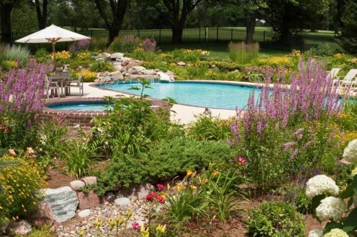 Best 25 fence around pool ideas on pinterest for Pool in front yard ideas