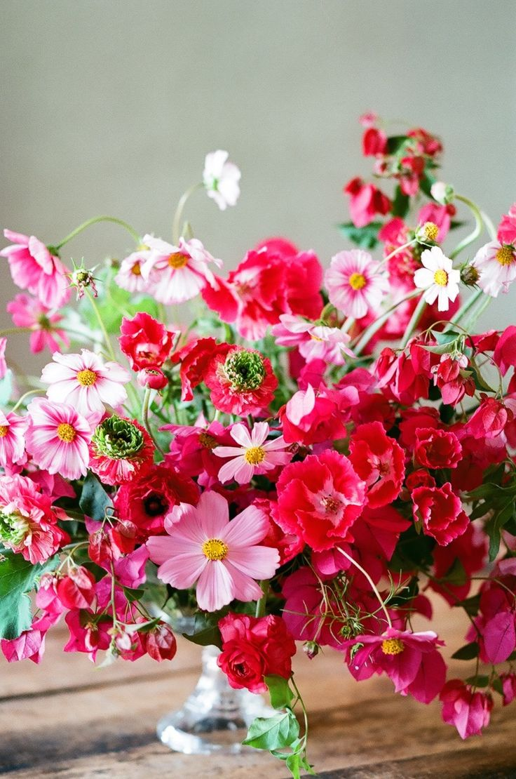 137 best Flowers: Meadows and Mixtures images by Fiona on Pinterest ...