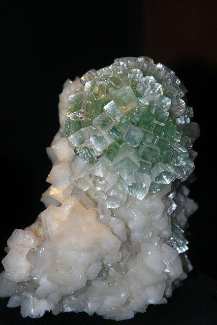 mineralogy-porn:    Fluorapophyllite: Fluorapophyllit Gemstone, Gems Minerals, Rocks Gems, Gemstones Rocks, Crystals Minerals, Crystals Rocks, Minerals Gemstones, Gemstone Crystals, Photo