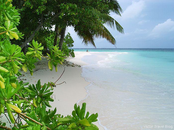 The beach of the Robinson Club Maldives.  https://victortravelblog.com/2014/10/21/robinson-club-maldives-coral-reef/