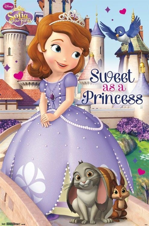 15 Best Sofia The First Room Images On Pinterest