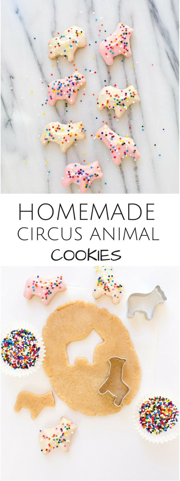 Homemade Circus Animal Cookies. Easy cookie recipe for kids and tastes so much better than store-bought!