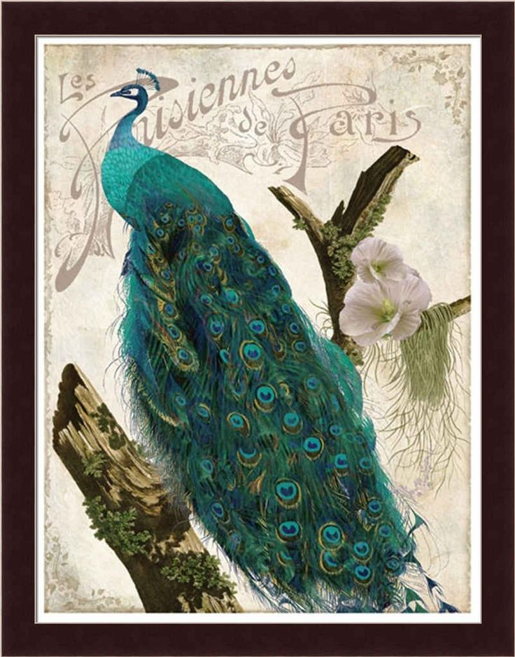 Peacock Bathrooms | Peacock Decor For Bathroom Accessories: Les Paons I By  Color Bakery .