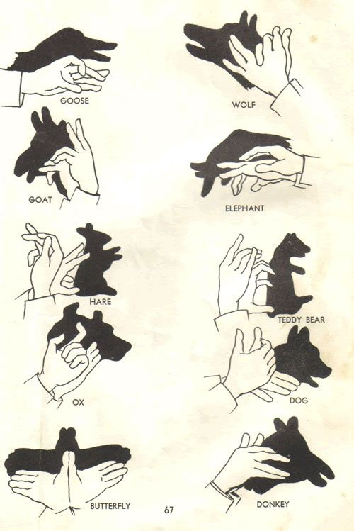 sombras com as maos como fazer - Pesquisa Google: Shadows Puppets, Stuff, Hands Shadows, Shadowpuppet, Kids, A Frames, Hands Puppets, Finger Plays, Hands Tattoo'S