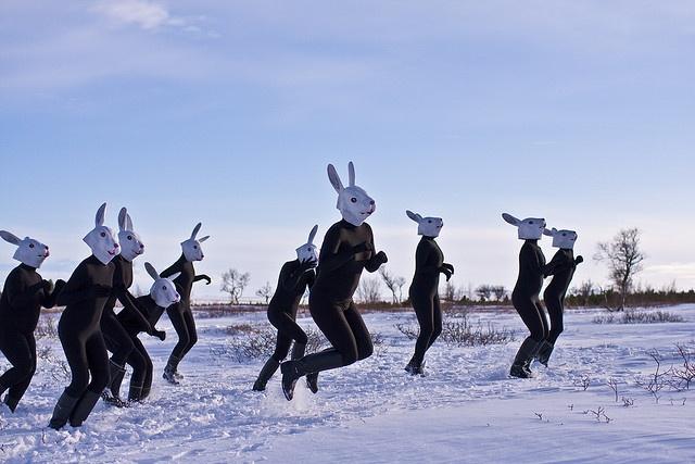 ...um, a bunny mask race?