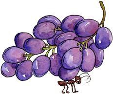 imagem decoupage clipart Ant n Grapes