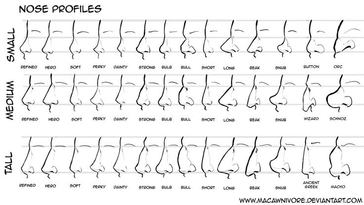 Nose Chart Reference by macawnivore  NOSES!