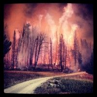 For the past 13 years, Mike Gue has been a wildland firefighter with the United States Forest Service and he's seen some of the country's largest and most intense fires. He's also taken pictures while fighting them. Recently, he's been sharing some of his work on Instagram, creating a feed that's full of jaw-dropping fire photos.