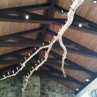great idea for drift wood chandelier