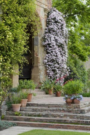 The steps and arch at the base of the Elizabethan tower, with Clematis montana 'Elizabeth' at Sissinghurst Castle Garden, Kent