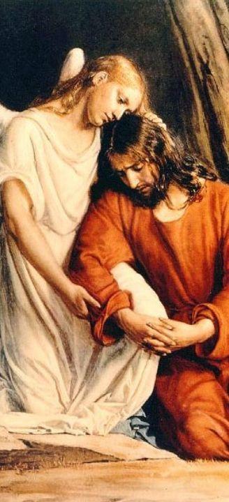 """""""Gli occhiali per vedere Gesù a volte sono le lacrime"""". Papa Francesco"""