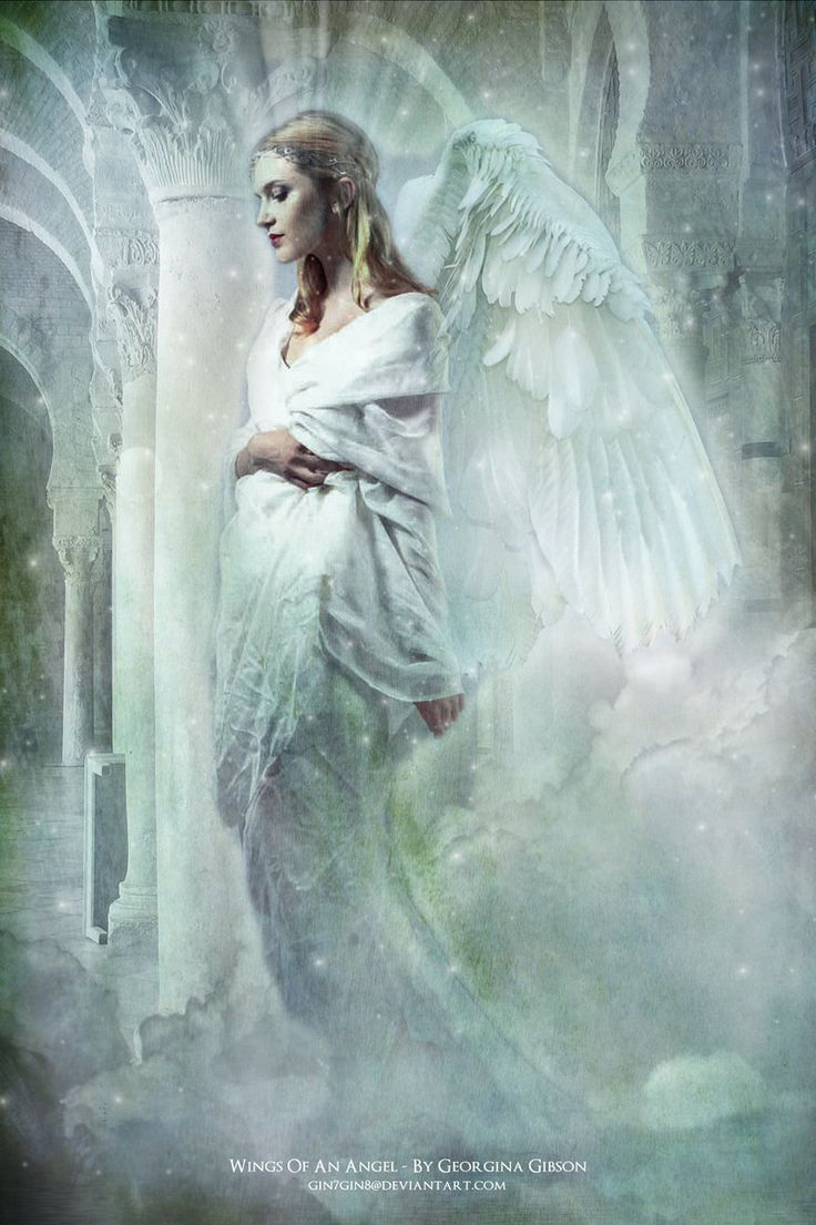 Wings of an Angel - challenge entry by Georgina-Gibson.deviantart.com