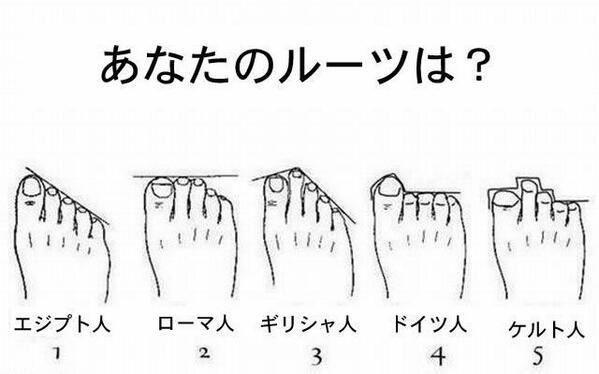 足の形で祖先がわかる