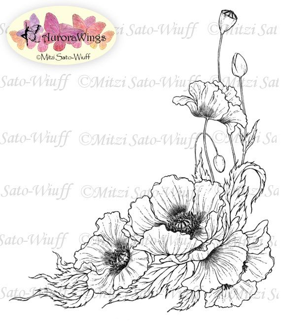 Digital Stamp – Instant Download – Poppy – digistamp – Oriental Poppy – Detailed Floral Line Art for Cards & Crafts by Mitzi Sato-Wiuff – Bärbel Koch