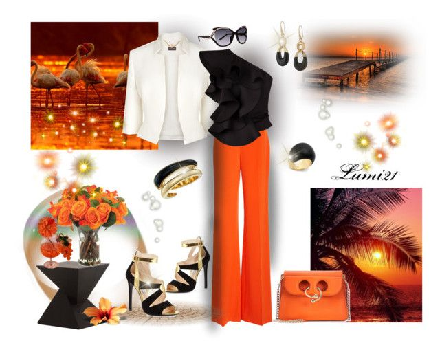 orange by lumi-21 on Polyvore featuring Siobhan Molloy, Phase Eight, Prada, J.W. Anderson, Michael Kors, Coach, Christian Dior, INC International Concepts and Nuevo