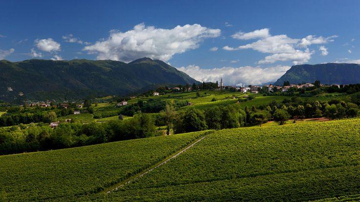 BEPIN DE ETO | produzione e vendita di vino e prosecco di Conegliano Valdobbiadene