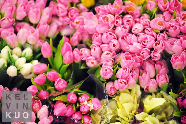 http://flowerdeliverysf.magnoto.com/  Home Page For San Francisco Flowers  Flower Delivery San Francisco,Sf Flower Mart,San Francisco Flower Delivery,Flower Mart Sf,Florists San Francisco