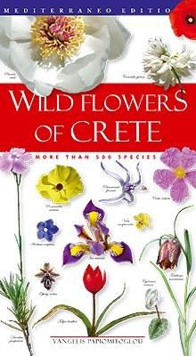 Wild flowers of crete, book, visit greece, crete, travel, holidays, nature, flora, mediterraneo editions, www. Mediterraneo.gr