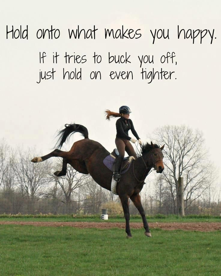 words to live by. | Horses, Inspirational horse quotes ...