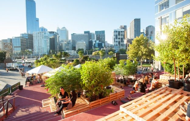An Urban Coffee Farm In The Middle Of Melbourne [Pics]