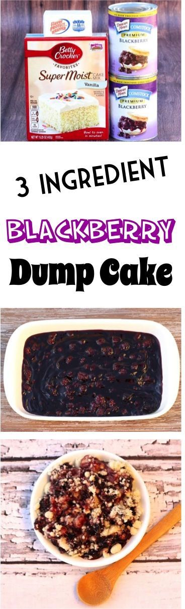 Dump Cake Recipes make such EASY Desserts! Check out this 3 Ingredient Blackberry Dump Cake for the perfect sweet treat! Simple to make and SO delicious!