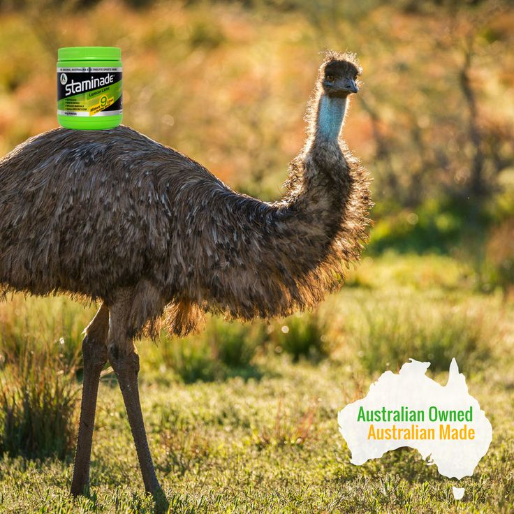 Did you know Staminade is Australian Made by an Australian owned, family business? Facts we are proud of!