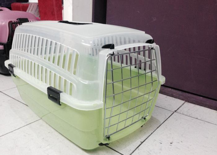 La Tienda de los Gatos: Transportadora Traslúcida Precio: $480