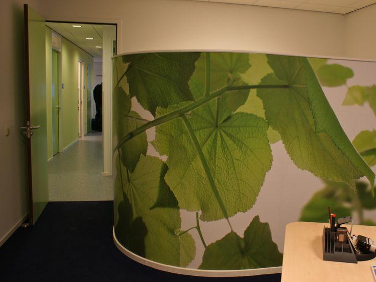 groen behang in dokterspraktijk--- green wallpaper in doctors practice