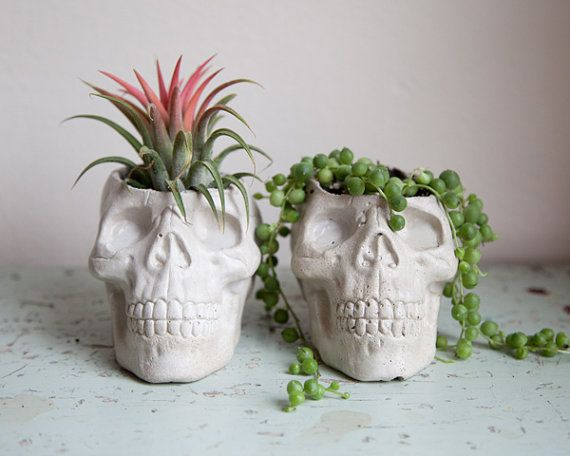 Skull Planter - garden decor, Plant Pot. although its concrete, so i wonder if that would suck out all the moisture...