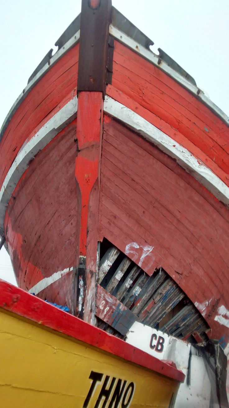 frontis barco