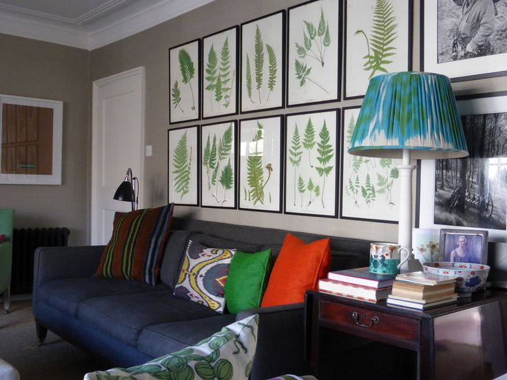 Fern engravings over the sofa in Ben Pentreath's London sitting room