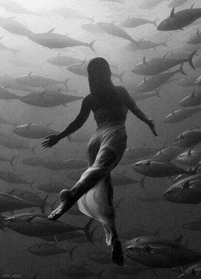 Photography by Maltese photographer Kurt Arrigo--olympic-synchronised-swimmers-maltese