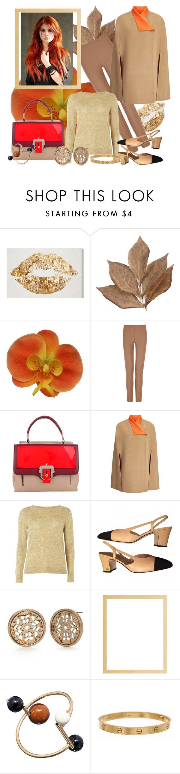 """""""Charlie Brown"""" by blorden ❤ liked on Polyvore featuring Bliss Studio, Joseph, Paula Cademartori, mel, Chanel, Red Camel, Marni and Cartier"""